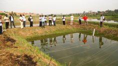 fish-farming two
