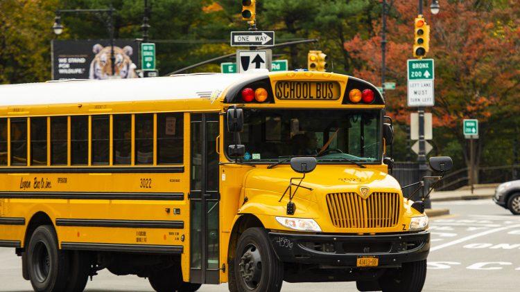 school BUS-new-york-city